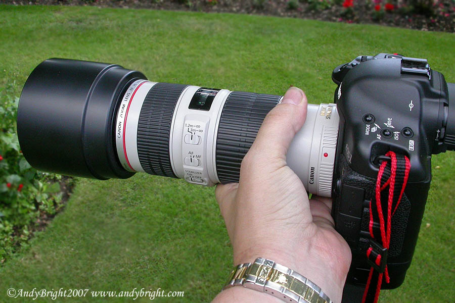 Review of the Canon EF 70-200mm f4 L I.S. USM lens